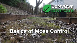 Basics of Moss Control & Soil Testing - Spring Lawn Care