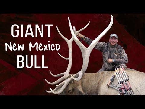 September Rut Hunt! Bow Hunting Elk With Guy Eastman (Eastmans' Hunting TV)