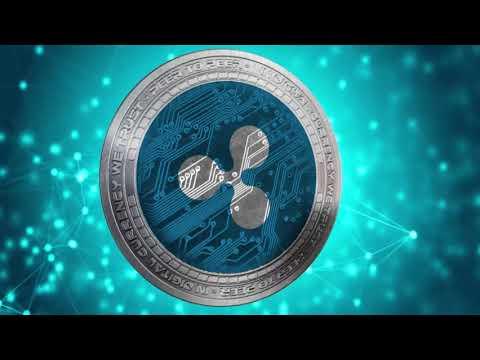 Cotizacion del bitcoin invest