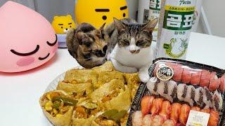 이마트 트레이더스 장보기 / 미국에서 온 택배 / 고양…