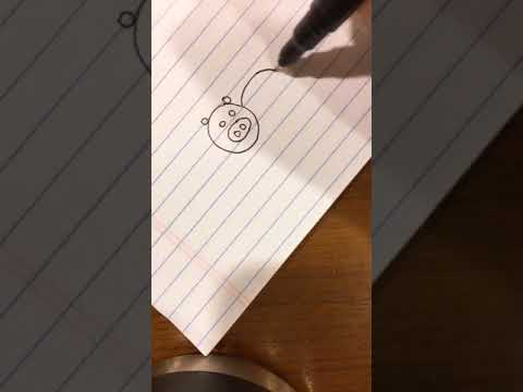 one circle one circle one big circle wwe (simple drawing)