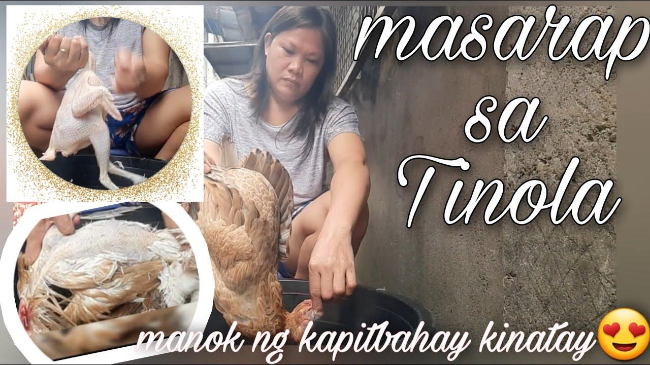 Download Manok ng kapitbahay kinatay🤩