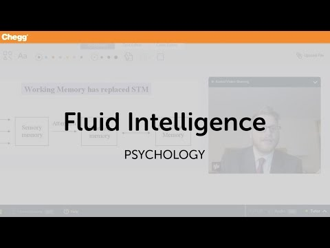 Fluid Intelligence | Psychology | Chegg Tutors