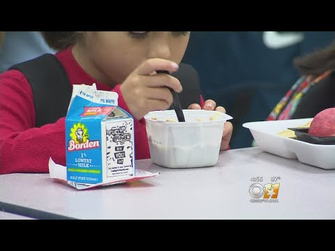 """Allergy-Free Tables"" Off Safe Alternative For School Children"