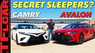 We Didn't Expect The 2020 Toyota Camry TRD and Avalon TRD To Sound Like THIS!