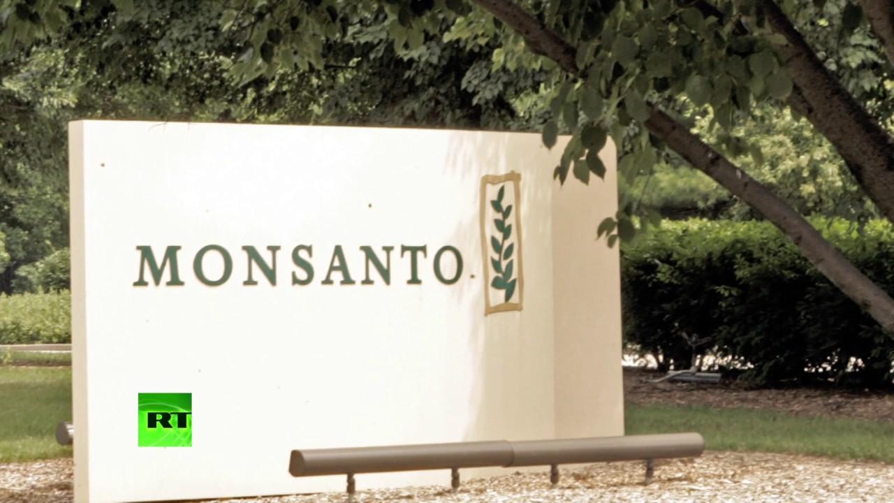 Monsanto при поддержке сотрудника американского ведомства скрывала опасность продукции