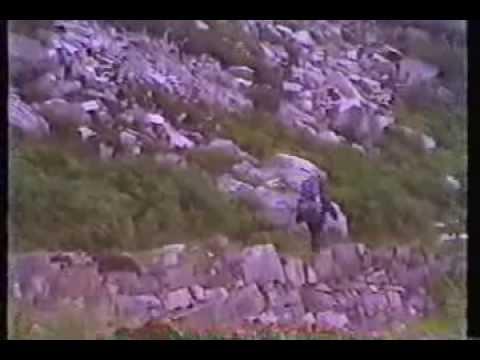 Ireland Wales England Aug 17 Sept 20 1992 Mary and Rod Ellis