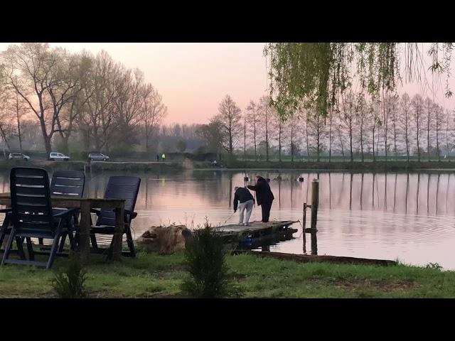 Ihmsen - Der Forellengott Toller Kämpfer am Morgen‼️‼️‼️21. April 2019