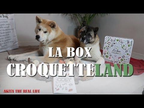 UNBOXING BOX CROQUETTELAND