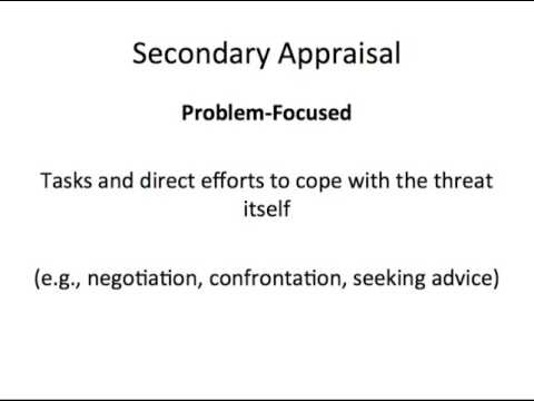 Transactional Model Of Stress And Adaptation