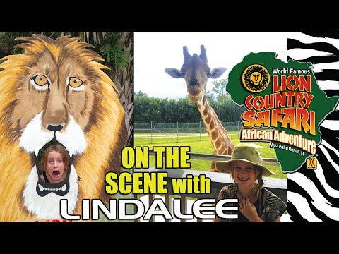 Lion Country Safari VIP Tour - On The Scene With Lindalee - Giraffes, Zebras, Chimpanzees & More!