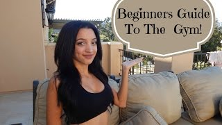 Beginners Guide To The Gym!