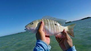 Still Blowing And I'm Still Fishing