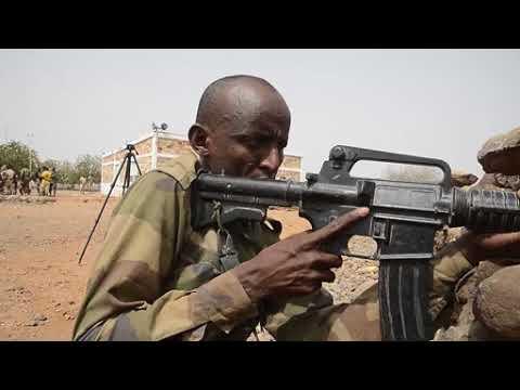 DFN:Djibouti Rapid Intervention Battalion Training DJIBOUTI 07.18.2018