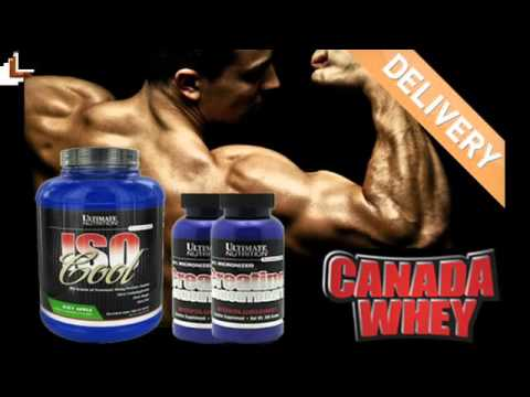 Ultimate Nutrition Creatine Monohydrate 300g Youtube