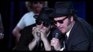 The Blues Brothers Everybody Needs Somebody