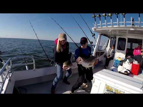 Seasonal Striped Bass Fishing Gear And Tactics