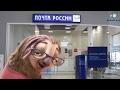 Как работает почта России!!!пародия на мультик Зверополис