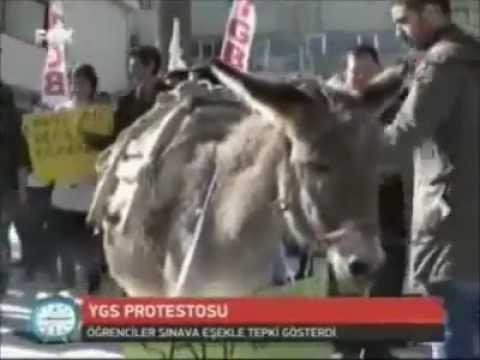 TGB'den Eşekli YGS Protestosu-FOXTV
