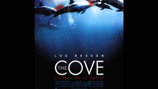2011 Dolphin Tale - Is The Cove worthy of a Hollywood Movie