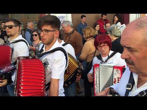 Concertinas Alcanhões 2017