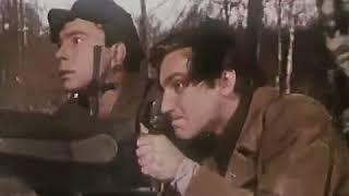 Измайловский парк. Рожденные бурей. 1957
