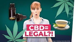 CBD: Weed jetzt in der Drogerie?!