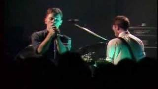 new order everything's gone green live 1981