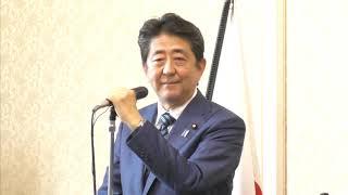【両院議員総会】安倍晋三総裁・二階俊博幹事長(2019.8.1)