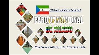 PARQUE NACIONAL DE MALABO. GUINEA ECUATORIAL   //   PARC NATIONAL DE MALABO.  GUINEE ...
