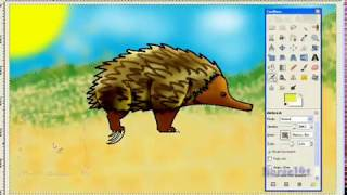 How I draw a Echidna (request)