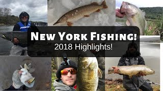 2018 New York Fishing Highlights!