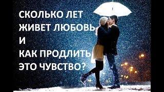 Сколько лет живет любовь и как продлить это чувство?