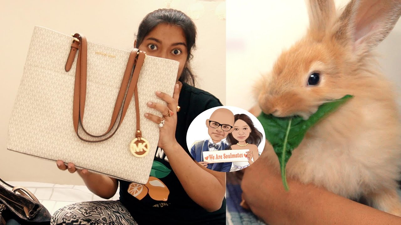 My Bag Collection 👜     🐇 Simba's Lunch Time