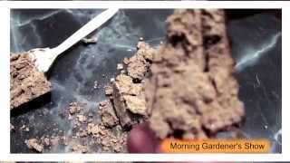 TRUTH About Your Garden Clay Soil.