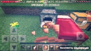 ¿Un Dia En Minecraft pe?