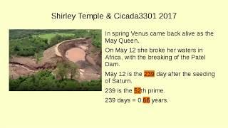 Shirley Temple & Cicada 3301