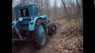 Wózki opałowe w ciągnik leśny T-40 A ☆ Возим дрова в лісі трактором Т-40 А ㋡ NazarFarmer