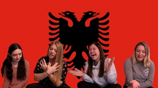 Americans React to Albanian Music