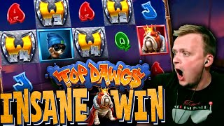RECORD BIG WIN on Top Dawgs Slot! (Suddenly pays MASSIVE)
