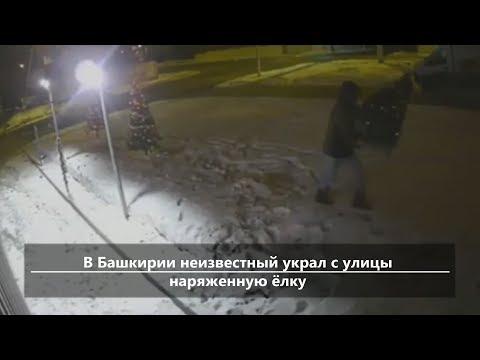 UTV.  Новости севера Башкирии за 12 декабря (Дюртюли, Янаул, Татышлы, Верхнеяркеево, Старобалтачево)