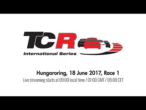 2017 Hungaroring, TCR Round 11 in full
