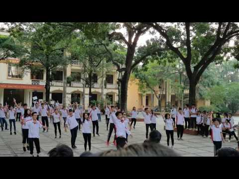 Flashmob Timber THPT Trần Phú