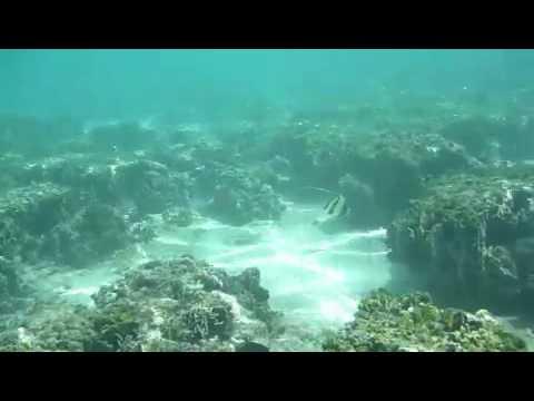 Guam Layover