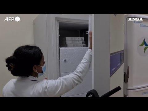 Covid, Dubai lancia la campagna di vaccinazione