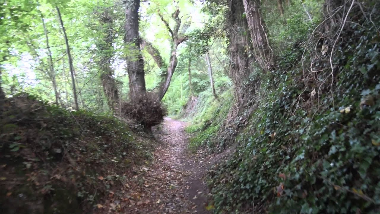 Image result for new path creative commons
