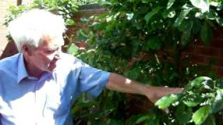 Gardening Tips with Dennis Hubbard (No.24)