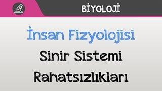 İnsan Fizyolojisi - Sinir Sistemi Rahatsızlıkları