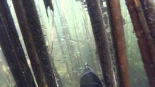 Spearfishing in Ulyanovsk / Подводная охота в Ульяновске