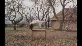 Záhrada (1995) - trailer